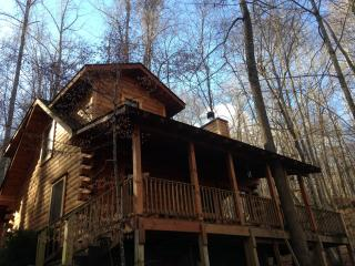The Heart Center - Gorgeous Log Cabin In The Woods - Robbinsville vacation rentals