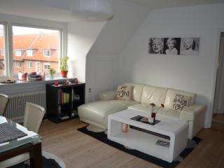 Romantic Condo with Internet Access and Television - Odense vacation rentals