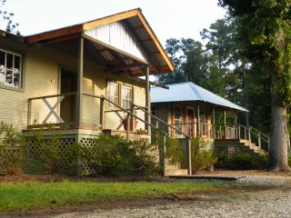 Comfortable Cottage with Internet Access and A/C - Covington vacation rentals