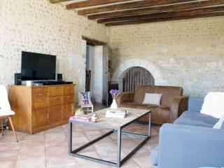 Relax w/ kids or friends - 42mn from Paris - Vendome vacation rentals