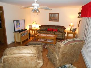 Indian River Home, In Town, Newly Renovated - Onaway vacation rentals