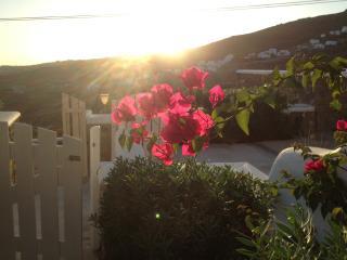 HELEN HOUSE -Minimal Perfection - Mykonos Town vacation rentals