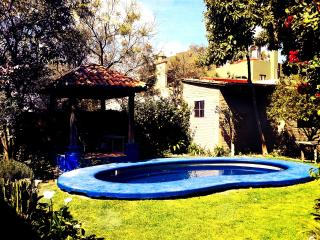 Beautiful colonial style house - San Miguel de Allende vacation rentals