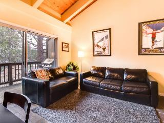 Luxurious condo w/ shared pool, hot tub & resort amenities - dogs ok! - Tahoe City vacation rentals
