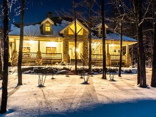 Stone Mountain Vista - McHenry vacation rentals