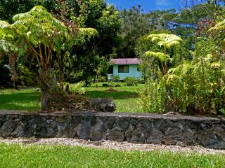Hawaiian Cottage @ a Studio Price! Hale Akule! - Puna District vacation rentals