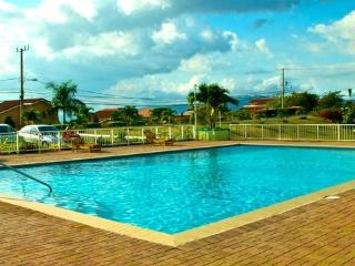 The View, 1 bed apt shared pool, gated community - Kingston vacation rentals