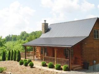 Livin' the Dream-Cabin w/ Hot Tub and Pool Table - Jefferson vacation rentals