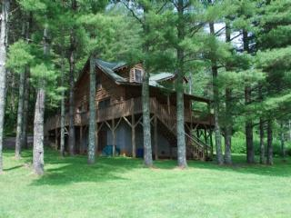 Picture Perfect - West Jefferson vacation rentals