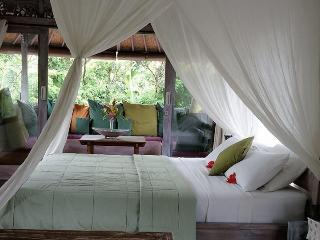 Tranquil Villa near Ubud Bali Plunge Pool & Garden - Ubud vacation rentals