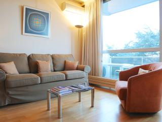Charming Apartment Near Chatelain - Ixelles vacation rentals