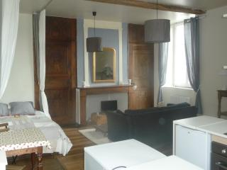 Cozy Oloron-Sainte-Marie Studio rental with Internet Access - Oloron-Sainte-Marie vacation rentals