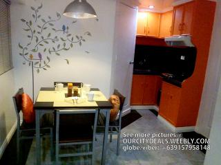Two BR 44 sqm along Edsa near GMA MRT Station - Quezon City vacation rentals