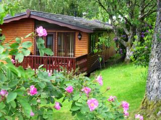 Nevis 4 star Chalet - Fort William vacation rentals