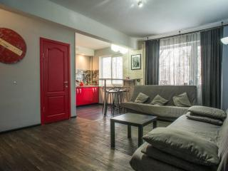 Furnished studio «Red Doors» - Saint Petersburg vacation rentals