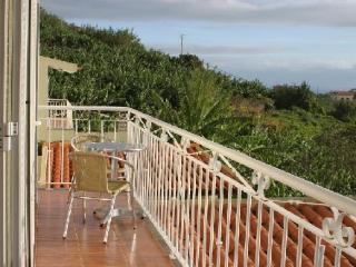 Self Catering in Arco da Calheta - 70231 - Madeira vacation rentals