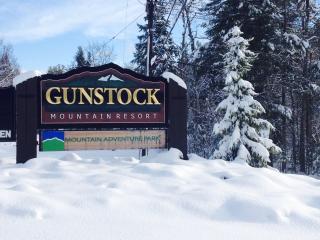 Four Season Lake /Ski Mt  House - Gilford vacation rentals