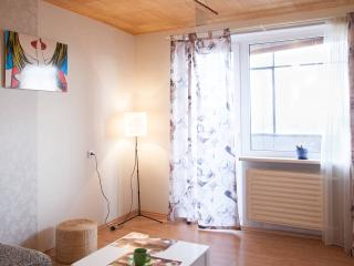 Romantic 1 bedroom Condo in Kaunas - Kaunas vacation rentals