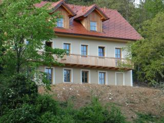 Sevnica, Slovenia, 3 apartments in house živa - Sevnica vacation rentals