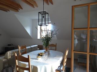 Sevnica, Slovenia, 3 apartments in house živa - Sevnica vacation rentals