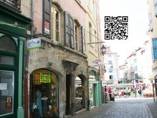 Nice Condo with Internet Access and Television - Le Puy-en Velay vacation rentals