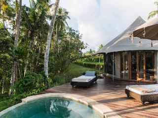 Luxury Tents Retreat Bali - Ubud vacation rentals