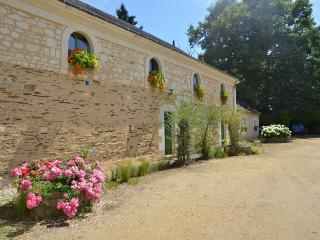 Maison d'hôtes La Pichonnière - Brissac-Quincé vacation rentals
