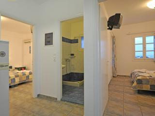 Comfortable Condo with Internet Access and Garden - Aliki vacation rentals