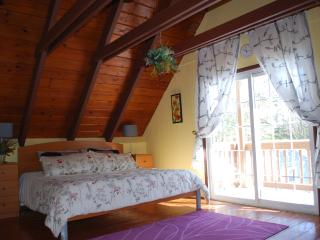 Updated Chalet in a private setting - Tobyhanna vacation rentals