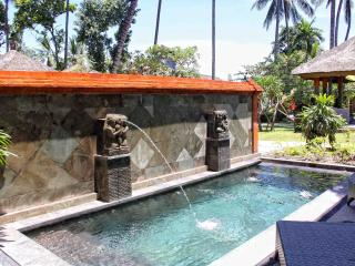 Nice Condo with Internet Access and A/C - Tenganan vacation rentals