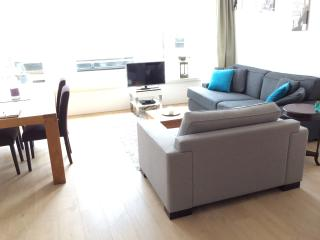 Central and luxurious apartment - Haarlem vacation rentals