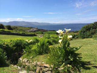 Nice 2 bedroom Cottage in Kenmare with Internet Access - Kenmare vacation rentals