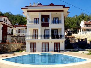 Estates Turkey Holiday Villa - Hisaronu vacation rentals