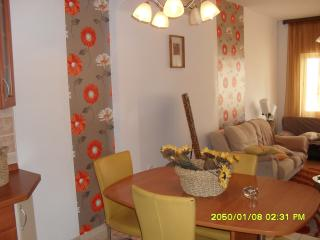 Apartman Tino with two beautifull teraces - Hvar vacation rentals