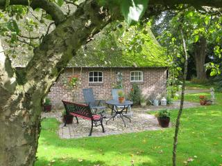 Holiday cottage  Onder de Linde - Zweeloo vacation rentals