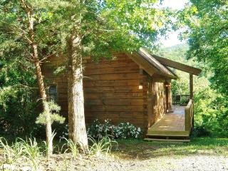 Cute Little Log Cabin For Rent.  Excellent Views. - Lake Lure vacation rentals