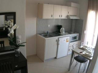 Nice 11 bedroom Apartment in Sarti - Sarti vacation rentals