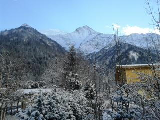 Nice 1 bedroom Les Houches Condo with Internet Access - Les Houches vacation rentals