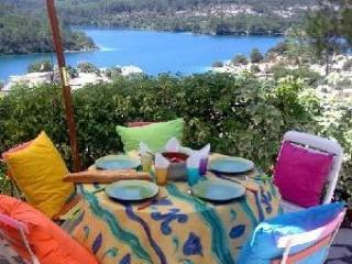Maison vue fantastique sur le lac - Esparron de Verdon vacation rentals