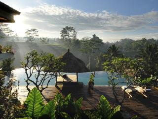 Comfortable Villa with Television and DVD Player - Carangsari vacation rentals