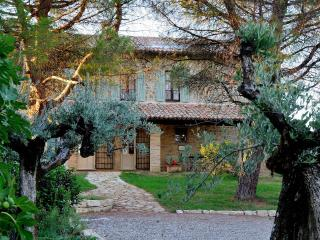 Wonderfull private villa 12 people, swimming pool - San Terenziano vacation rentals