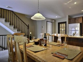 Beautiful 4 bedroom House in Mont Tremblant - Mont Tremblant vacation rentals