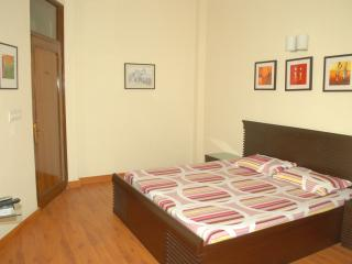 Woodpecker Luxury Apartment Hauz khas - New Delhi vacation rentals