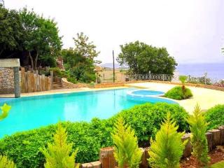 Charming Villa with Internet Access and Dishwasher - Bodrum Peninsula vacation rentals