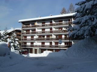 Apartment Le Mole, centrally location spacious APT - Les Carroz-d'Araches vacation rentals