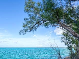 Sarah's Cottage,Cat Island,Bahamas. mid village - Orange Creek vacation rentals