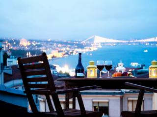 TAKSIM ULTRA VIP APARTMENTS - KING TERRACE SUITE - Istanbul vacation rentals