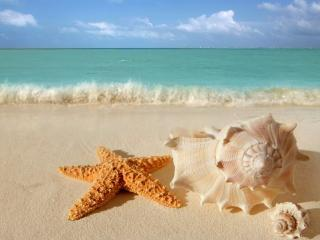 Beauty in Paradise MAY SALE - Cancun vacation rentals