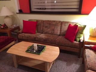 Comfortable 3 Bedroom Tannersville Apartment - Tannersville vacation rentals