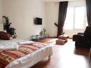 Comfortable Studio in Nisantasi #2 - Istanbul vacation rentals